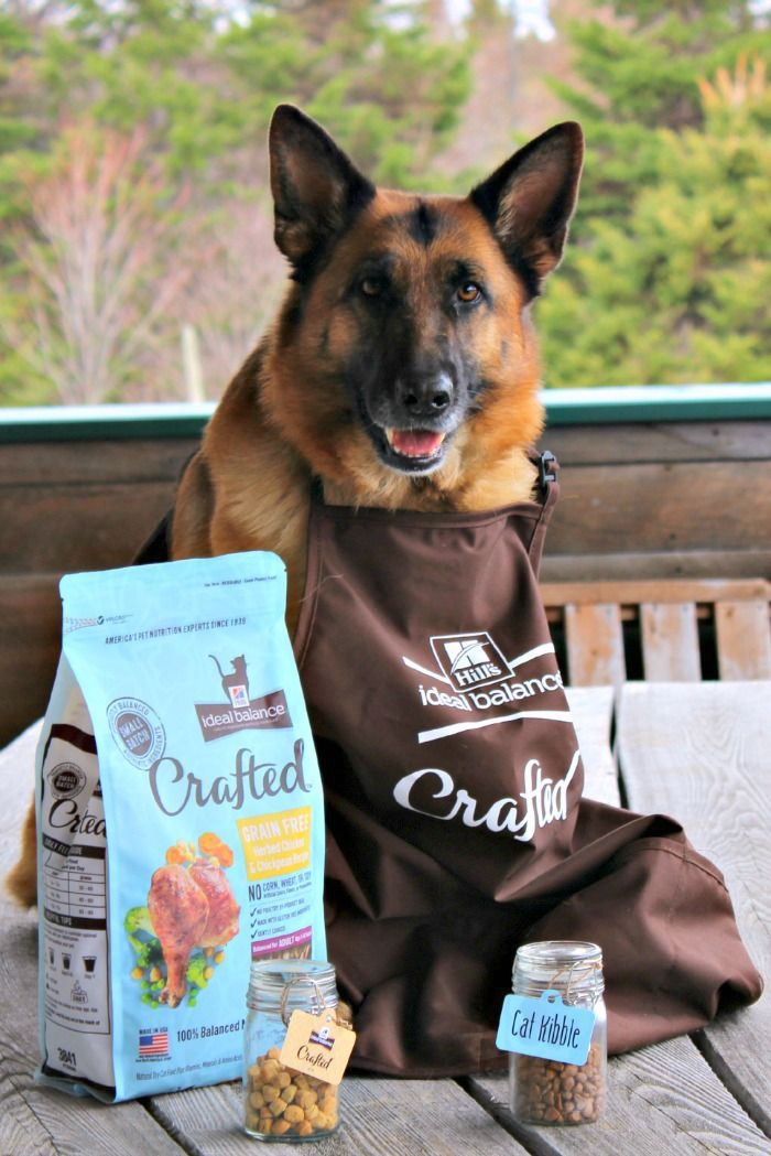 Hill S Ideal Balance Crafted Provides Small Batch Cooking For Pets