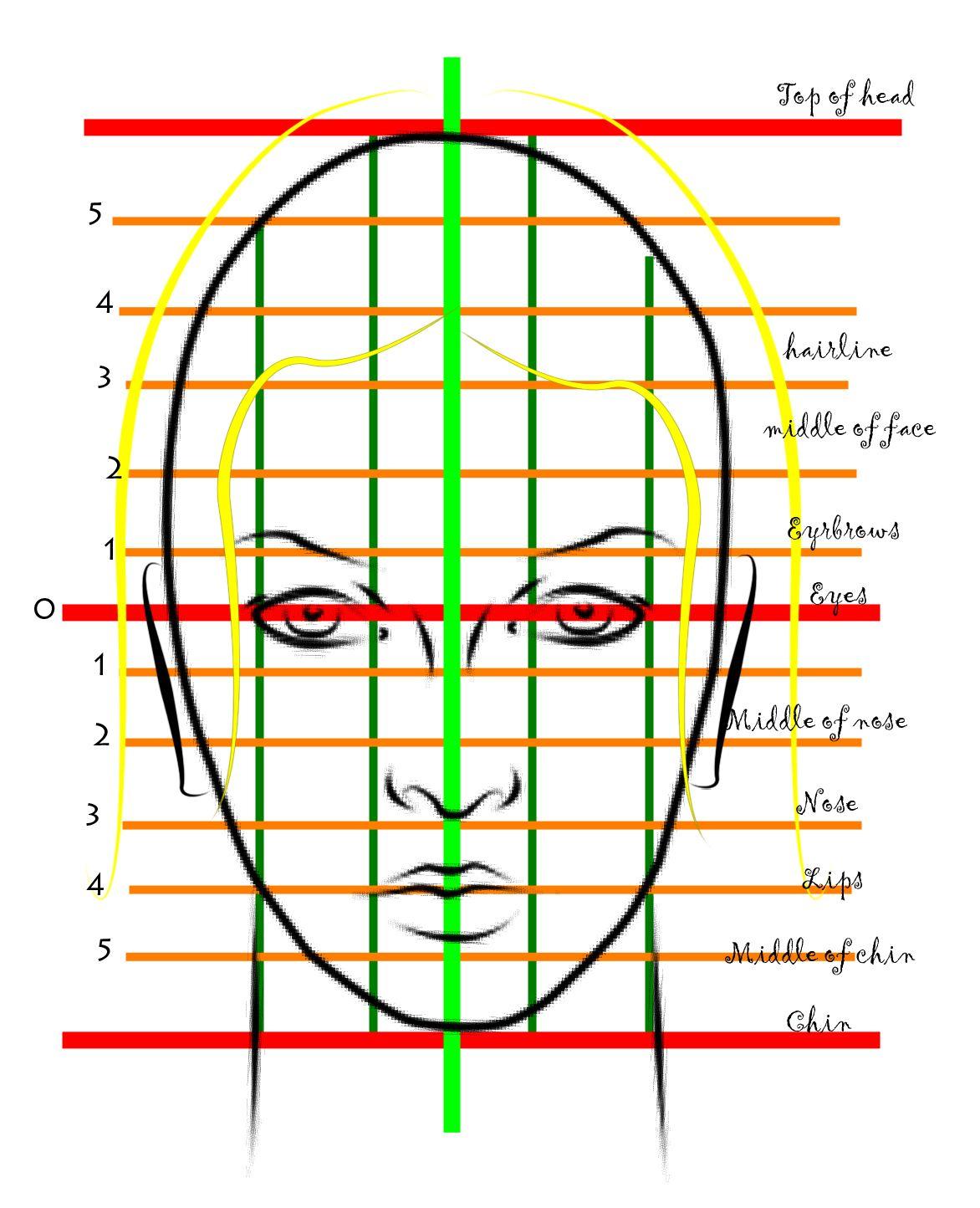 Female Face Proportions By Buktopgicha