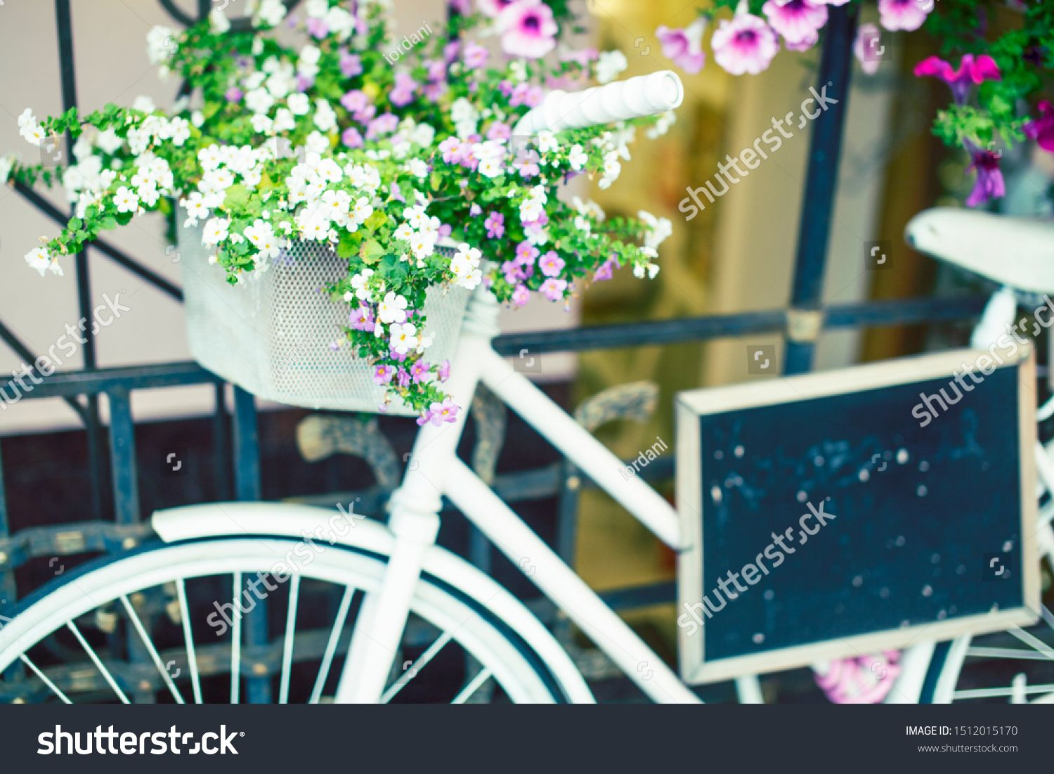 flower in basket of vintage bicycle on vintage wooden house wall summer concept