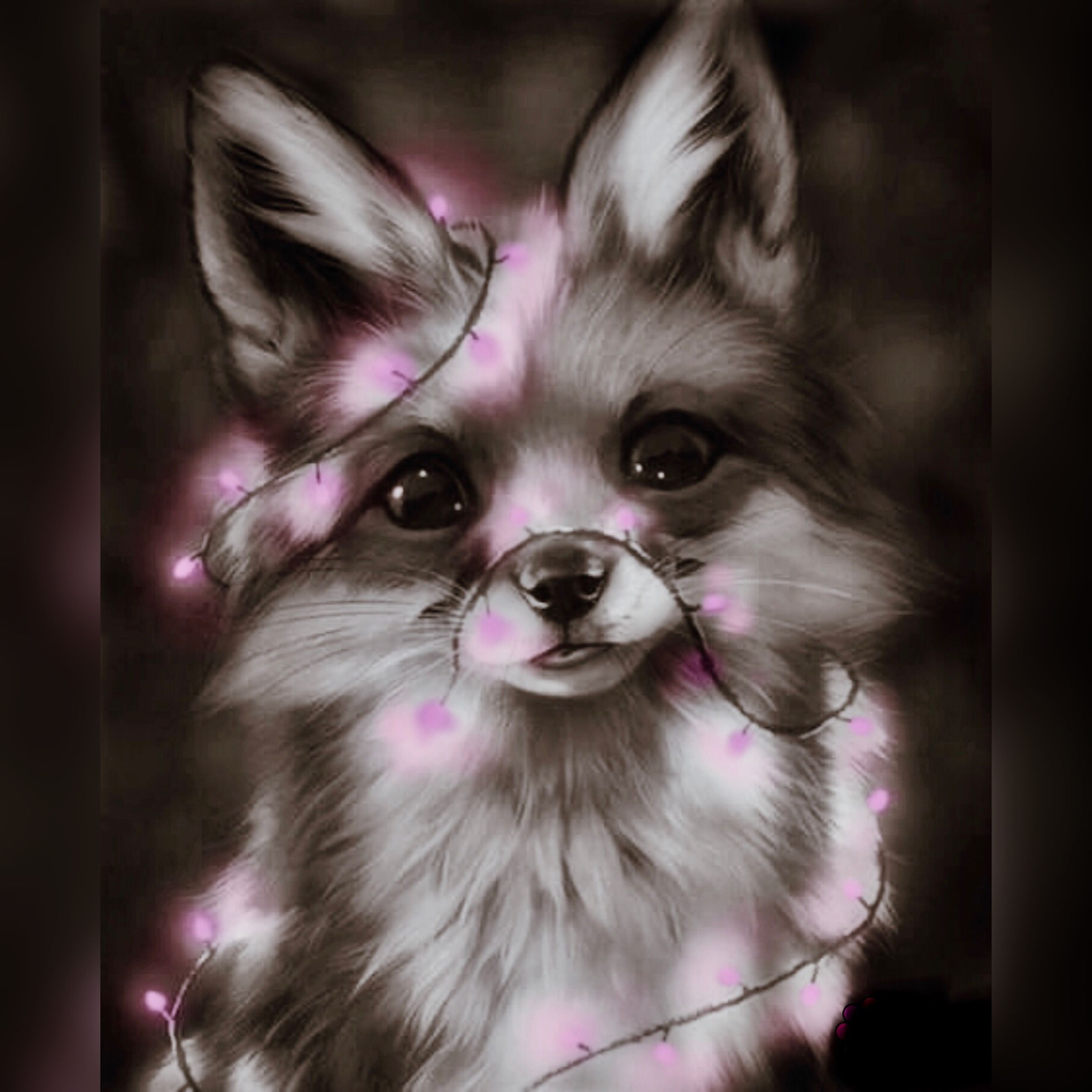 Pin By Stephanie Greholver On Foxes Cute Dog Pictures Cute Animal Drawings Kawaii Cute Fantasy Creatures