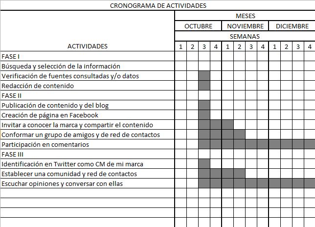 Cronograma De Actividades Mensual Planeacion De Proyectos Cuaderno De Tareas 7 Dias De La Creacion