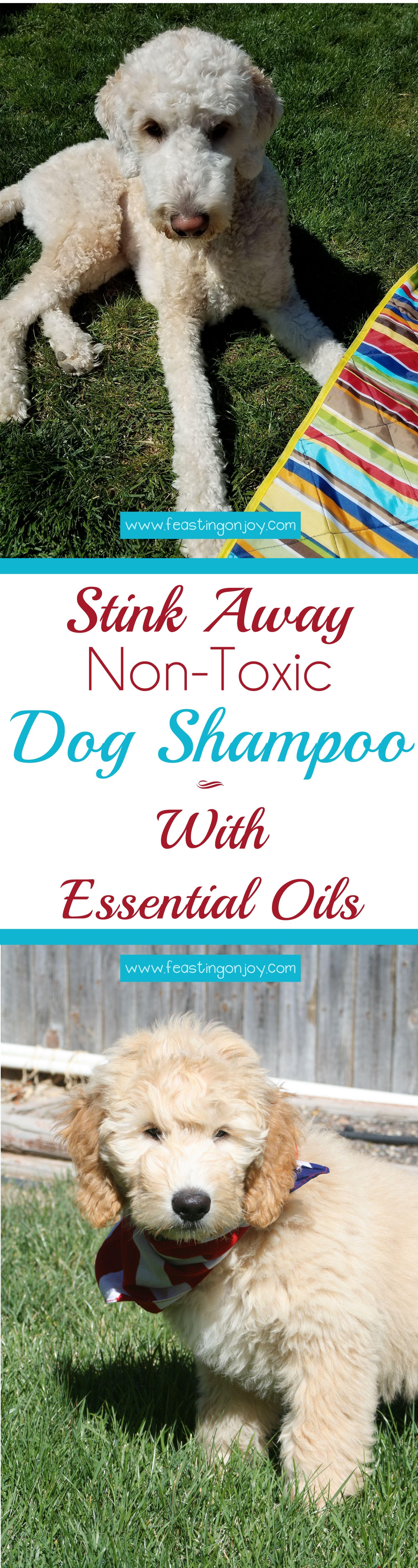 Stink Away DIY NonToxic Dog Shampoo With Essential Oils