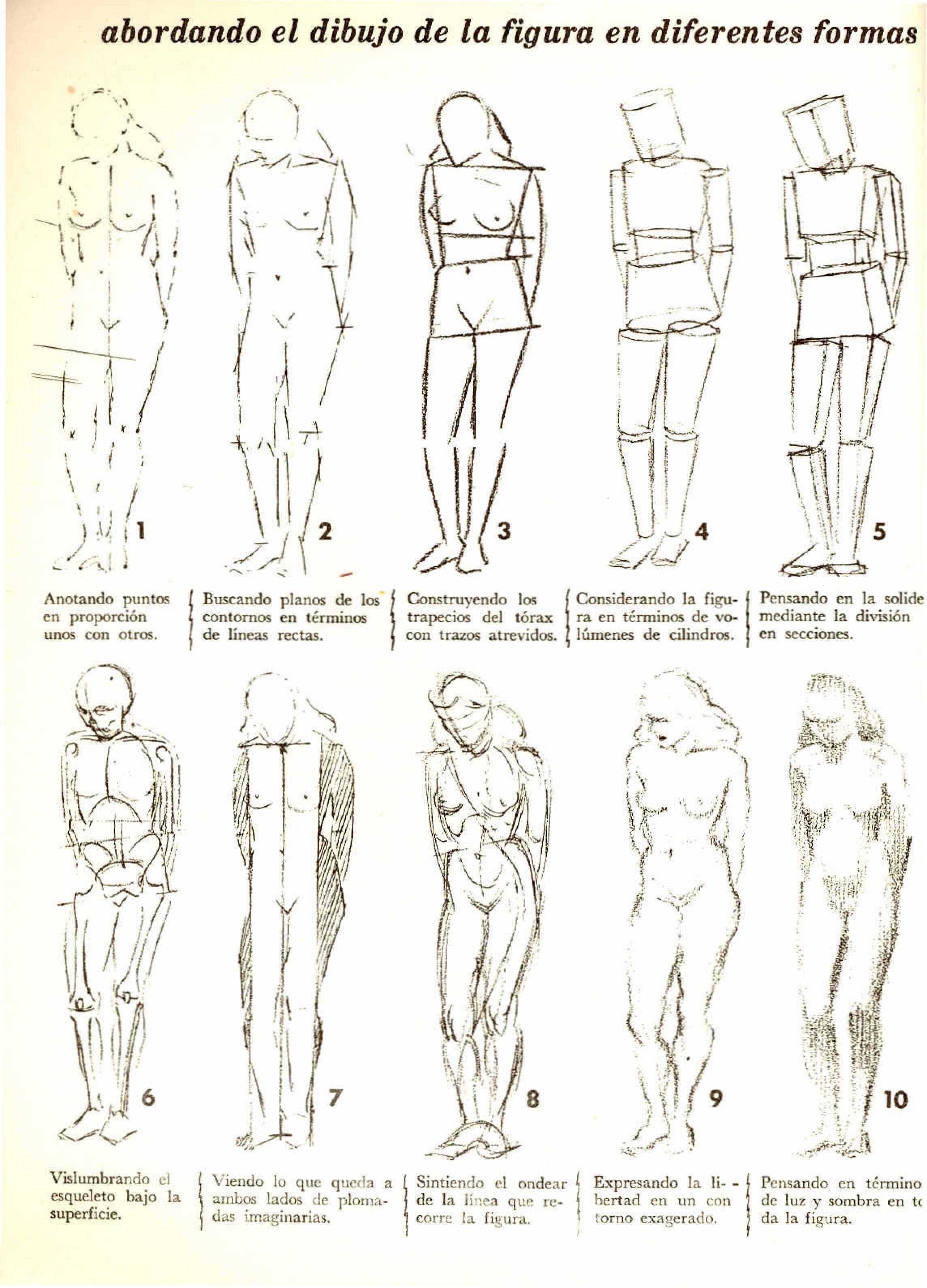 Libros Para Dibujar Cuerpo Humano