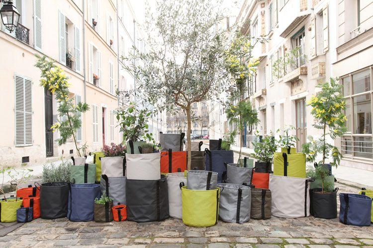 14 idées pour décorer sa maison avec des plantes vertes Decor styles
