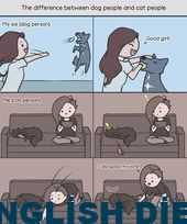 7 purrfect cat comics that all cat owners refer to