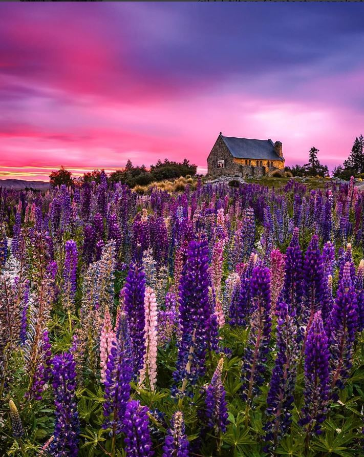New Zealander Captures Spellbinding Photos That Showcase Striking Beauty of Her Country