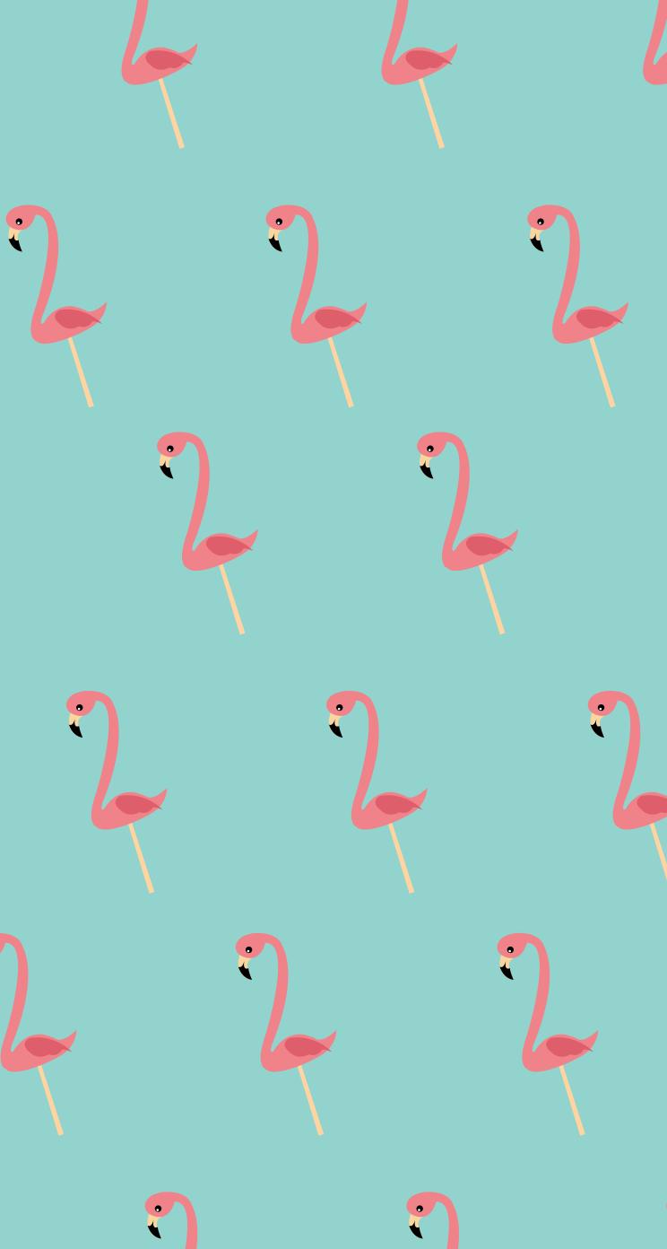 Flamingos wallpapers Flamingos stock photos