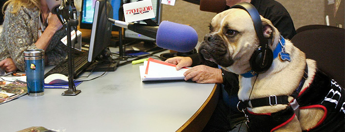 Thank you for tuning in to the Pet News Radio programs. We are sure you will find them informative and entertaining. Please click on any topic of interest below.  Host: Lisa Davies Company: Vacation Pet Friendly Lisa Davies. She advocates pet travel by working with hotels, restaurants, event organizers and others to ensure that pets are welcomed.  Visit http://vacationpetfriendly.com/pet-news-radio-programs to listen in on any of our past programs!