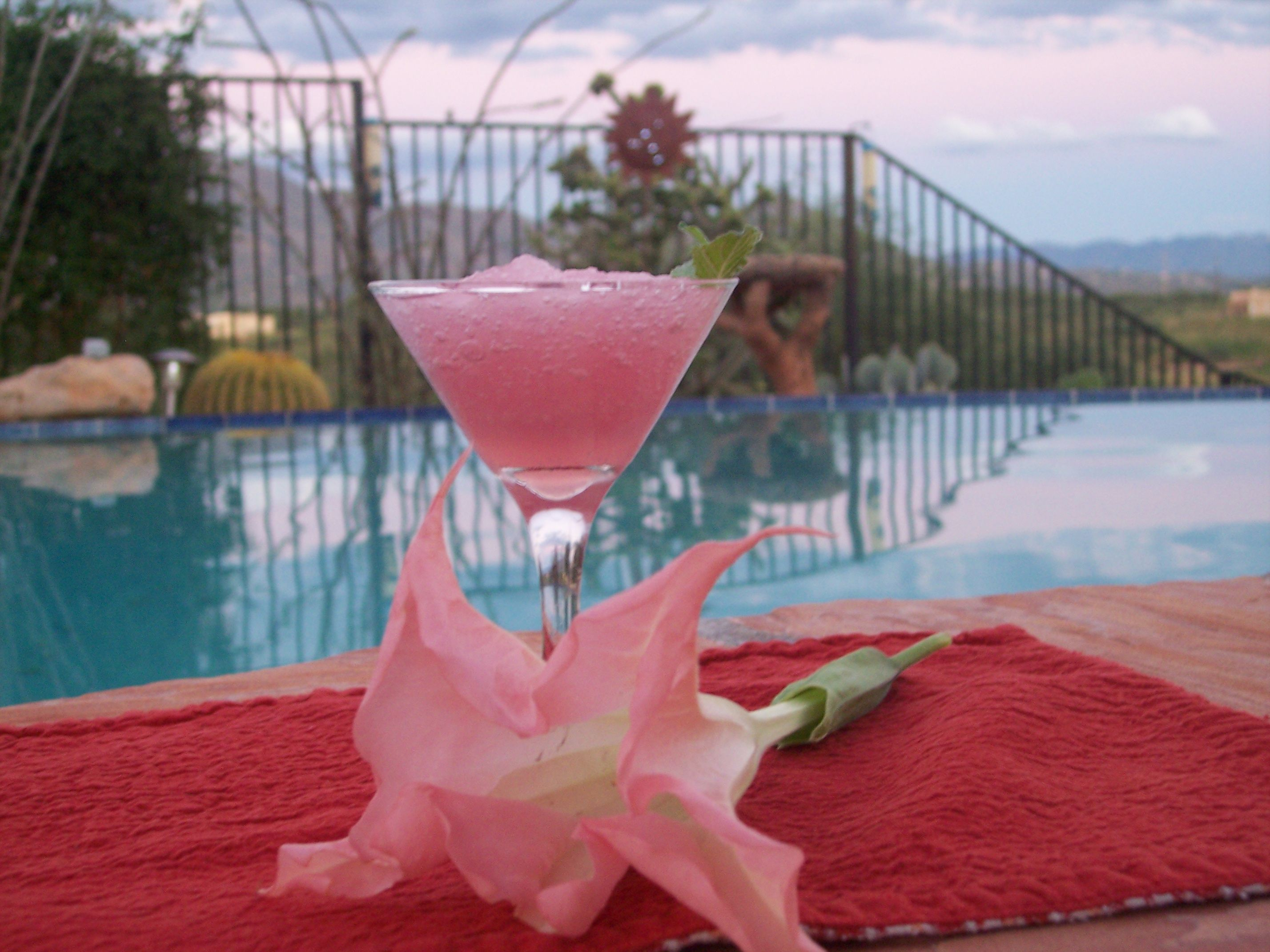 Pink Daiquiri. 6 oz pink lemonade concentrate,6 oz white rum,12 oz 7-up, 1 squirt lime juice. Mix well and freeze for 24 hours.