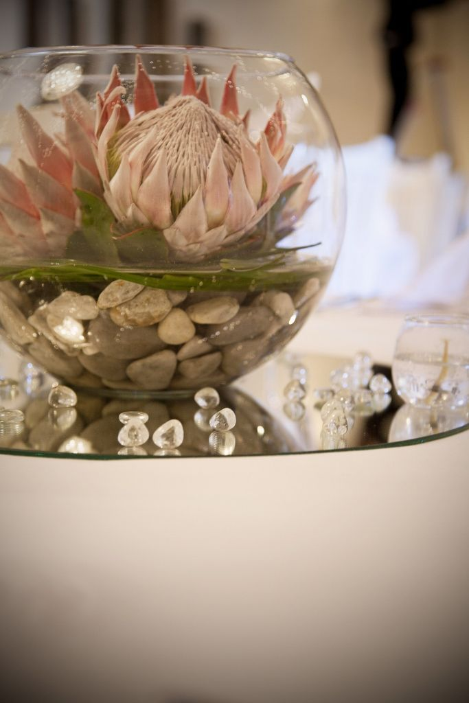 Protea Centre Piece Round Wedding Tables Protea Wedding Protea Centerpiece