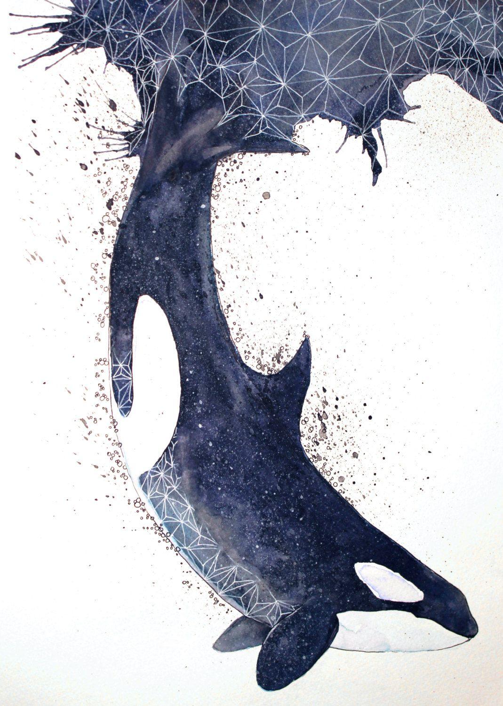 1000drawings | things fishy | pinterest | シャチ、iphone の壁紙