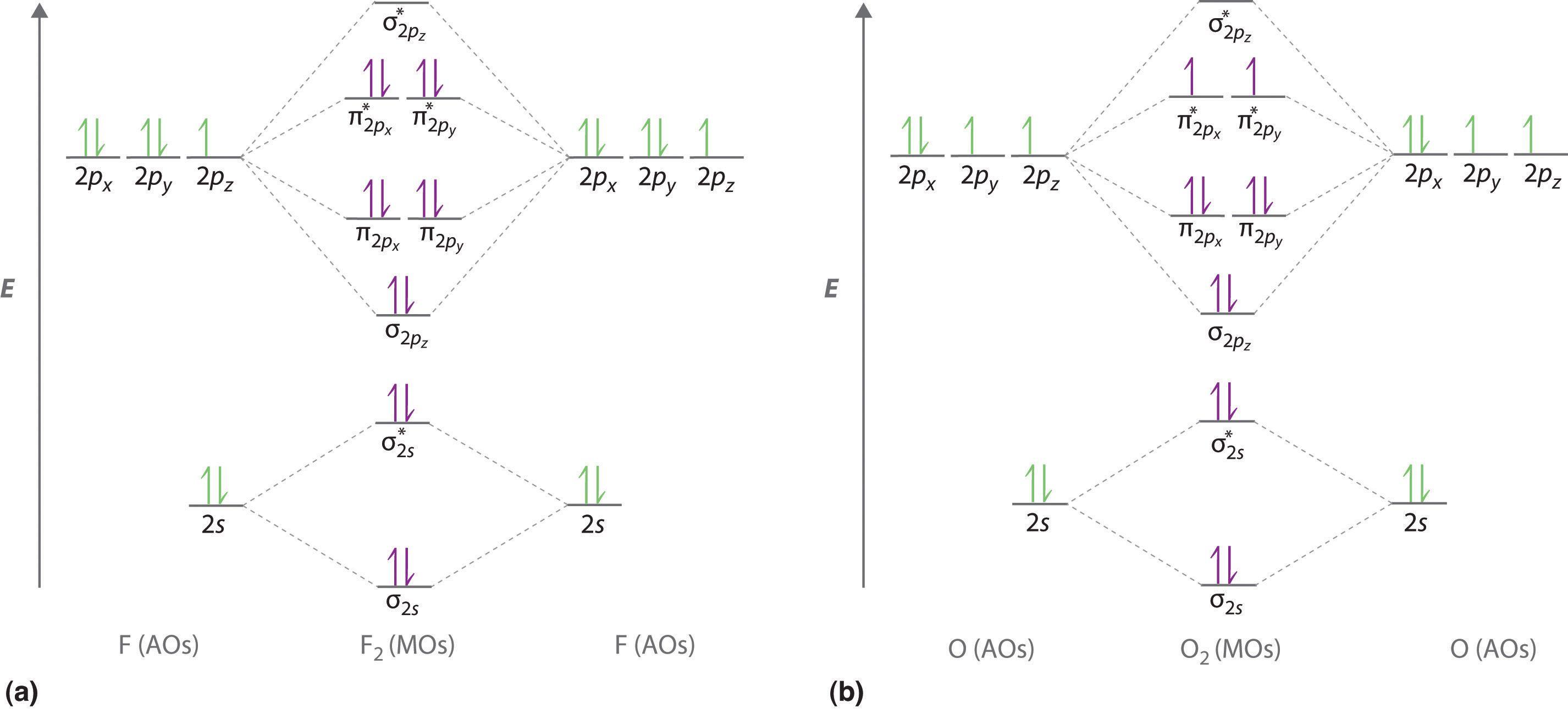 Molecular Orbital Energy Level Diagrams For Homonuclear