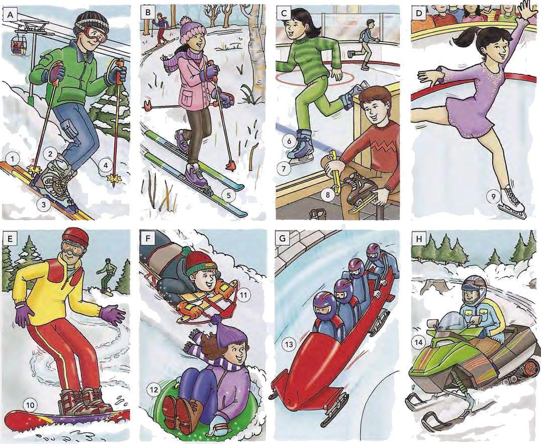 Winter sports and recreation vocabulary list PDF Liste