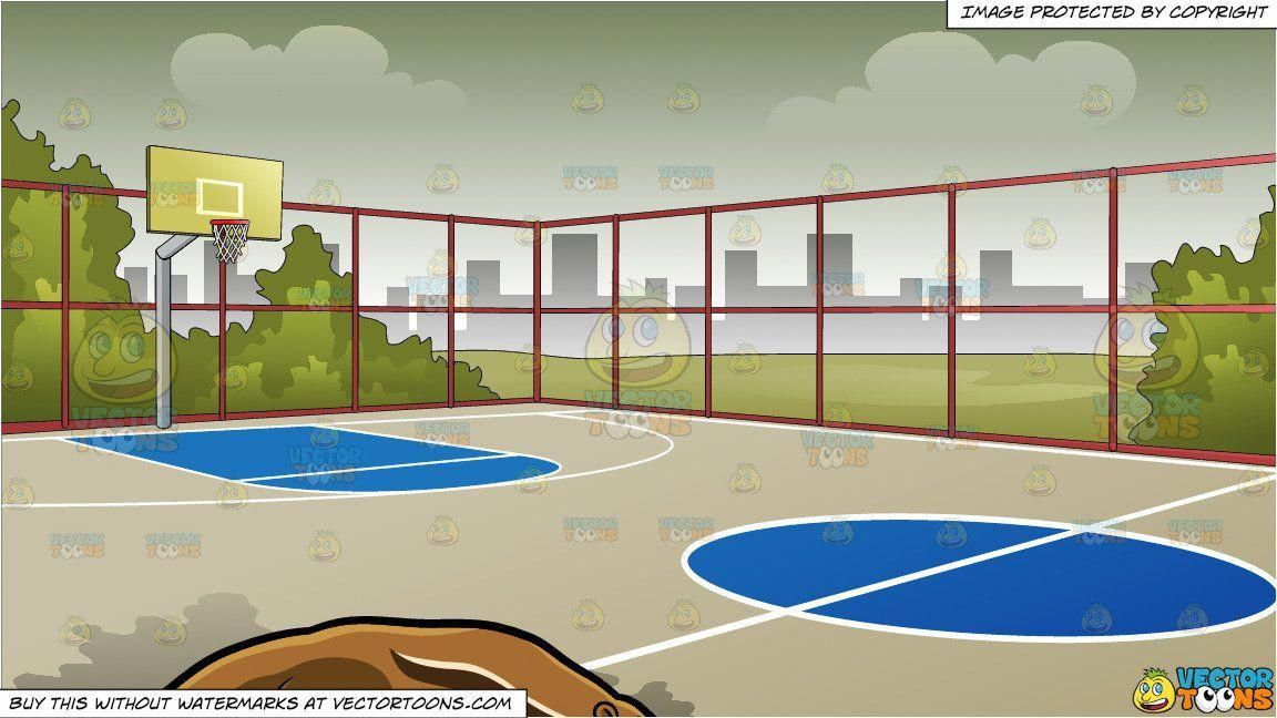 An Anteater And Outdoor Basketball Court Background Basketballcourt Outdoor Basketball Court Basketball Court Basketball