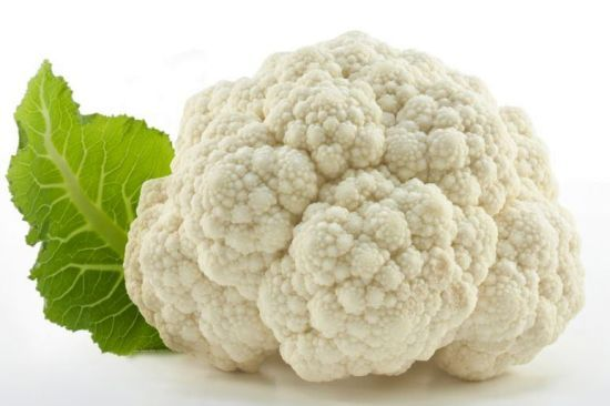 Cauliflower has been suggested to draw its historical origination in the ancient Asia and re-emerged in the Mediterranean region, Turkey and Italy around 600 BC. Around the mid-16th century, cauliflower achieved recognition in France and Northern Europe. Health benefits of cauliflower include relief from indigestion, ultraviolet radiation, diabetes, colitis respiratory papillomatosis, macular degeneration, obesity and hypertension.