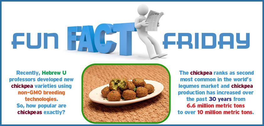 Better chickpeas, better falafel.