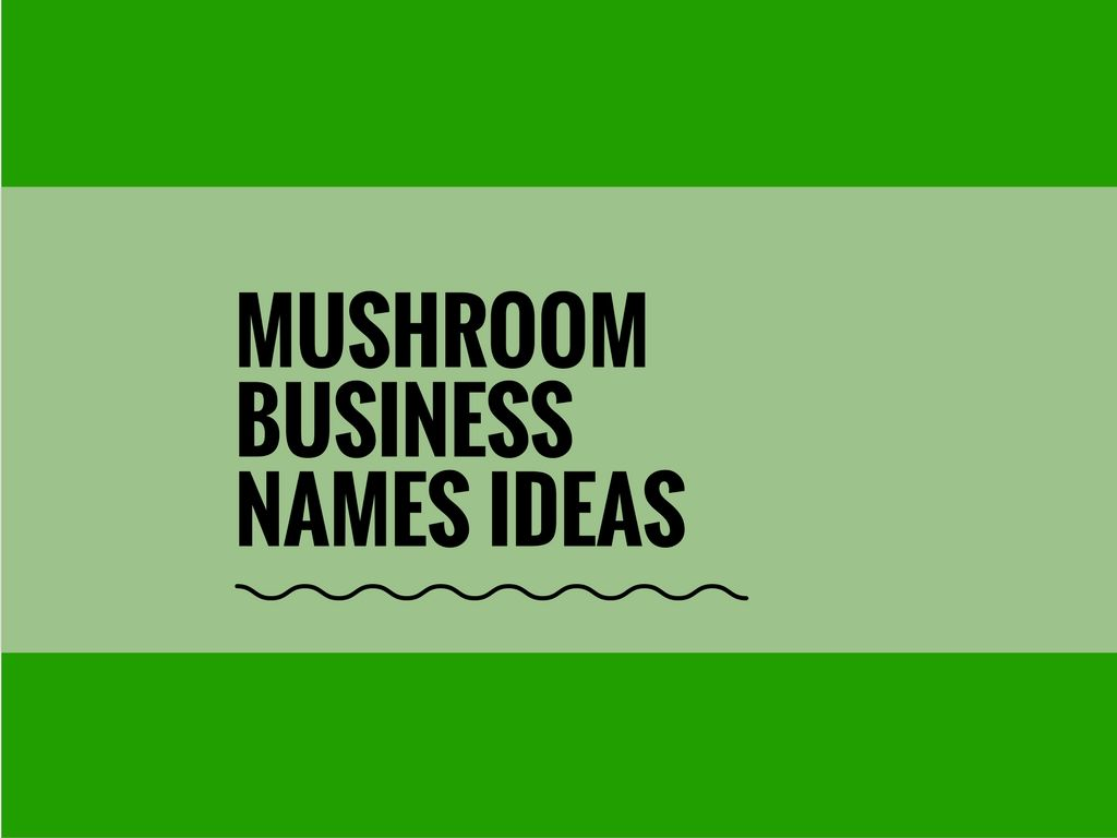 a mushroom farming business can be a mean of big profit in just a few weeks with considerably low start up capital investment to start a business