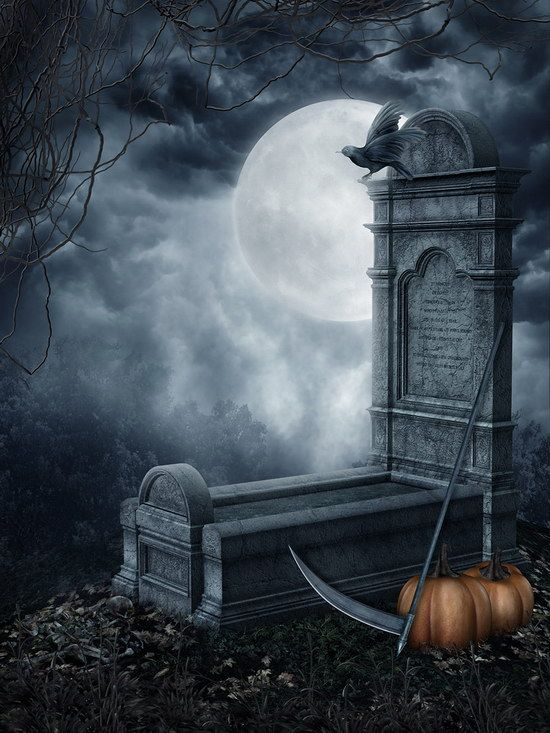 Click to Buy \u003c\u003c Night Sky Pumpkin Halloween Graveyard Photography - halloween backdrop