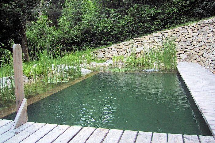 Badeteich Anlegen, Schwimmteich Bauen | Hoppe Galabau ... Schwimmteich Garten Anlegen
