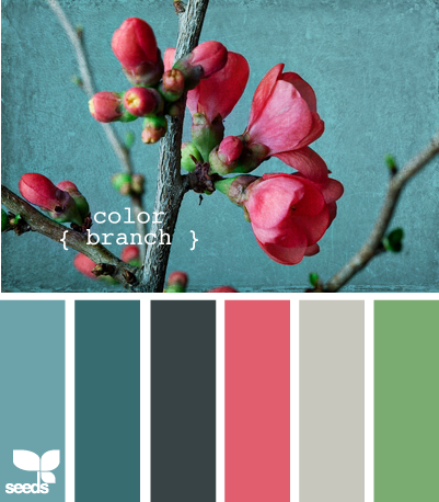 THESE are some pretty colors that might brighten up that room! ... and match the sofa @Tina Doshi Doshi O'Day bought!