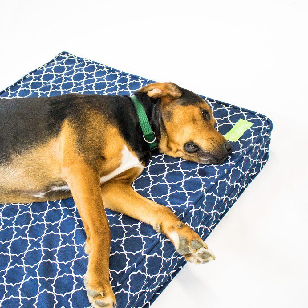 New Guitar Center Deals! Orthopedic dog bed, Dog pet
