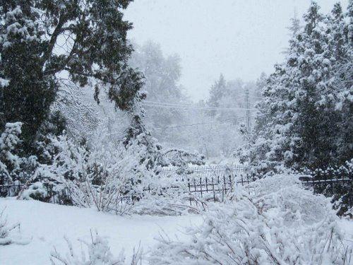 Ziarat Snowfall Balochistan Pakistan Holiday Resort