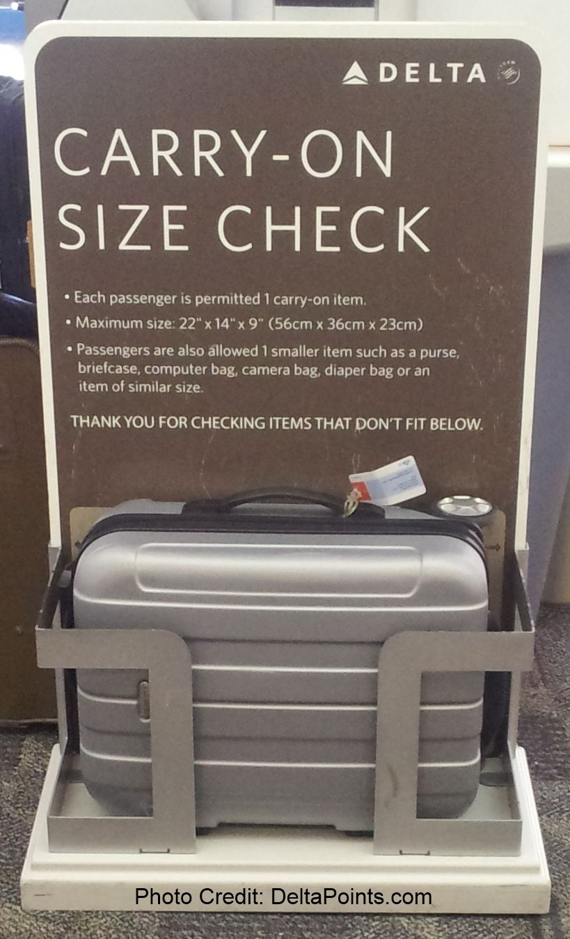 Ways to AVOID bag fees on Delta Air Lines & Skyteam