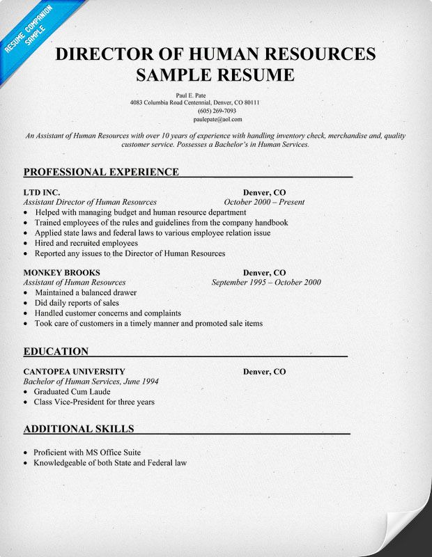 Director Of Human Resources Sample Resume (resumecompanion - human resources resume samples