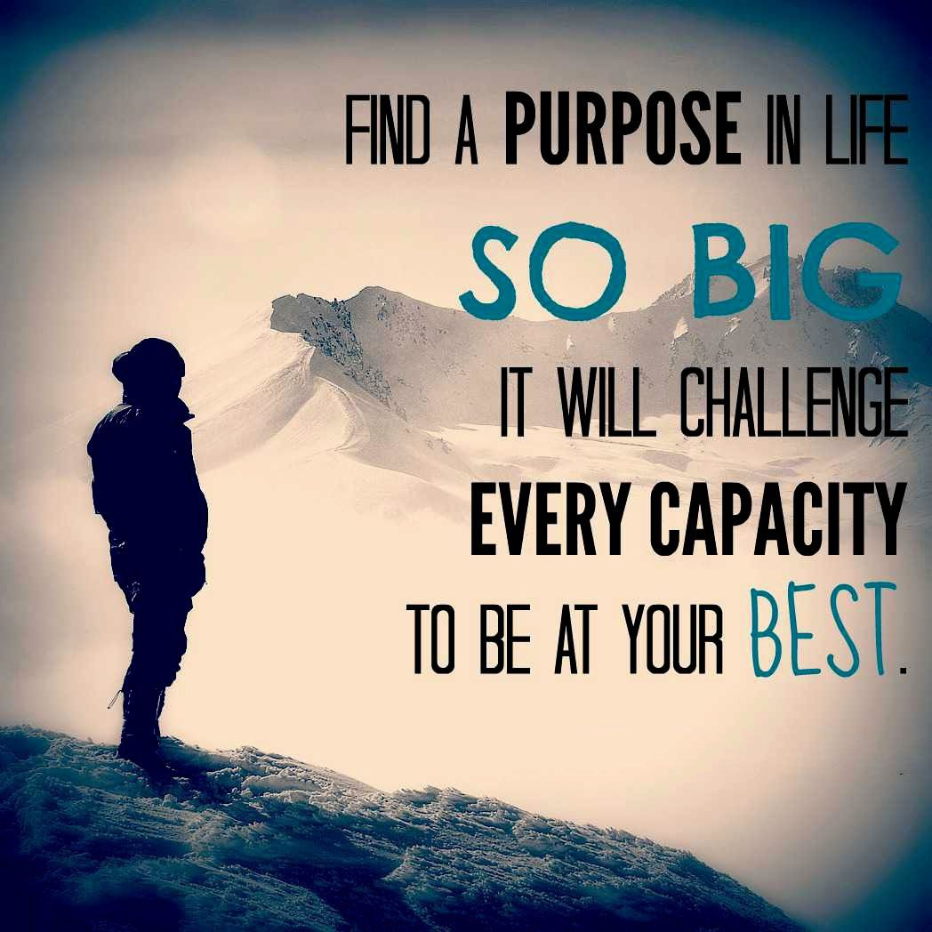 Quotes Purpose Of Life Find A Purpose In Life So Big It Will Challenge Every Capacity To