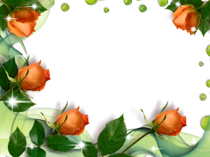Flores Blancas Png 800 600: Moldura-rosas.png (800×600)