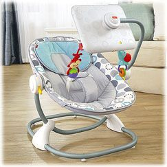 Newborn-to-Toddler Apptivity Seat for iPad device