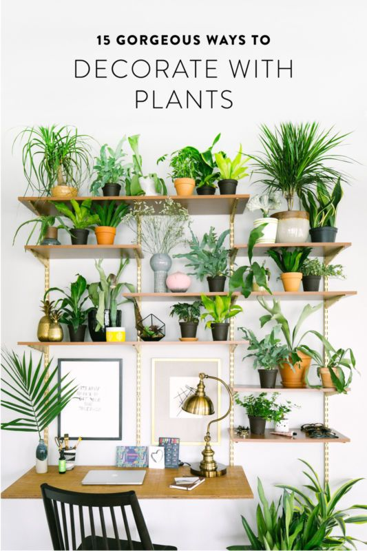Best 25 balcony definition ideas on pinterest small for Plants for apartment balcony