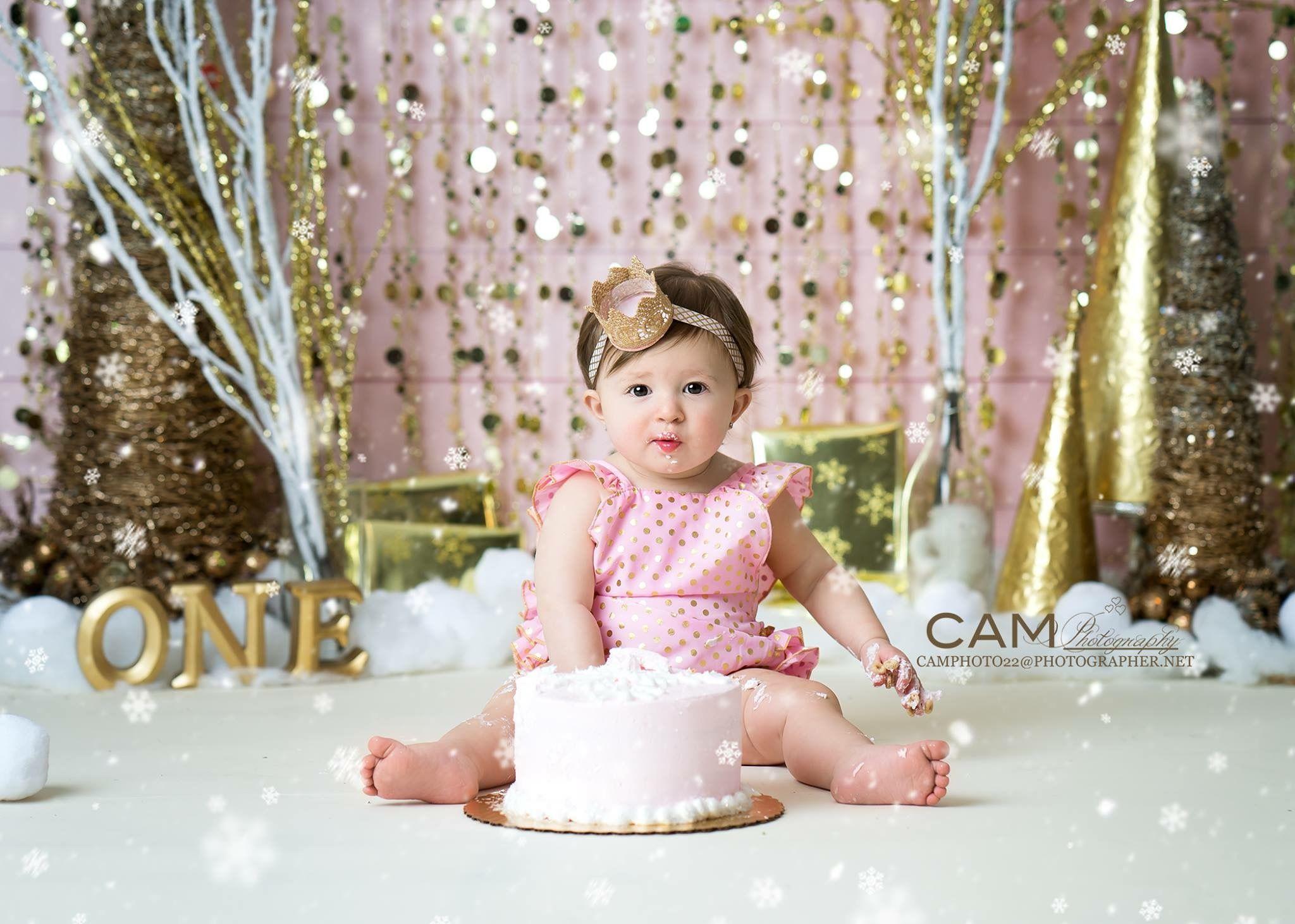 Winter Onederland First Birthday Photo Shoot First Birthday