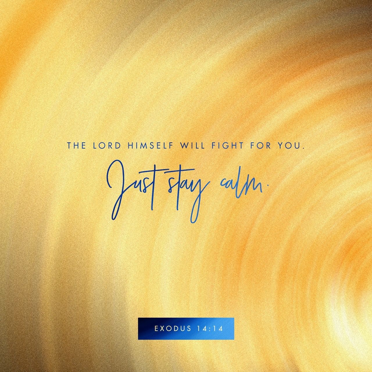 The Lord Will Fight For You And You Shall Hold Your Peace And