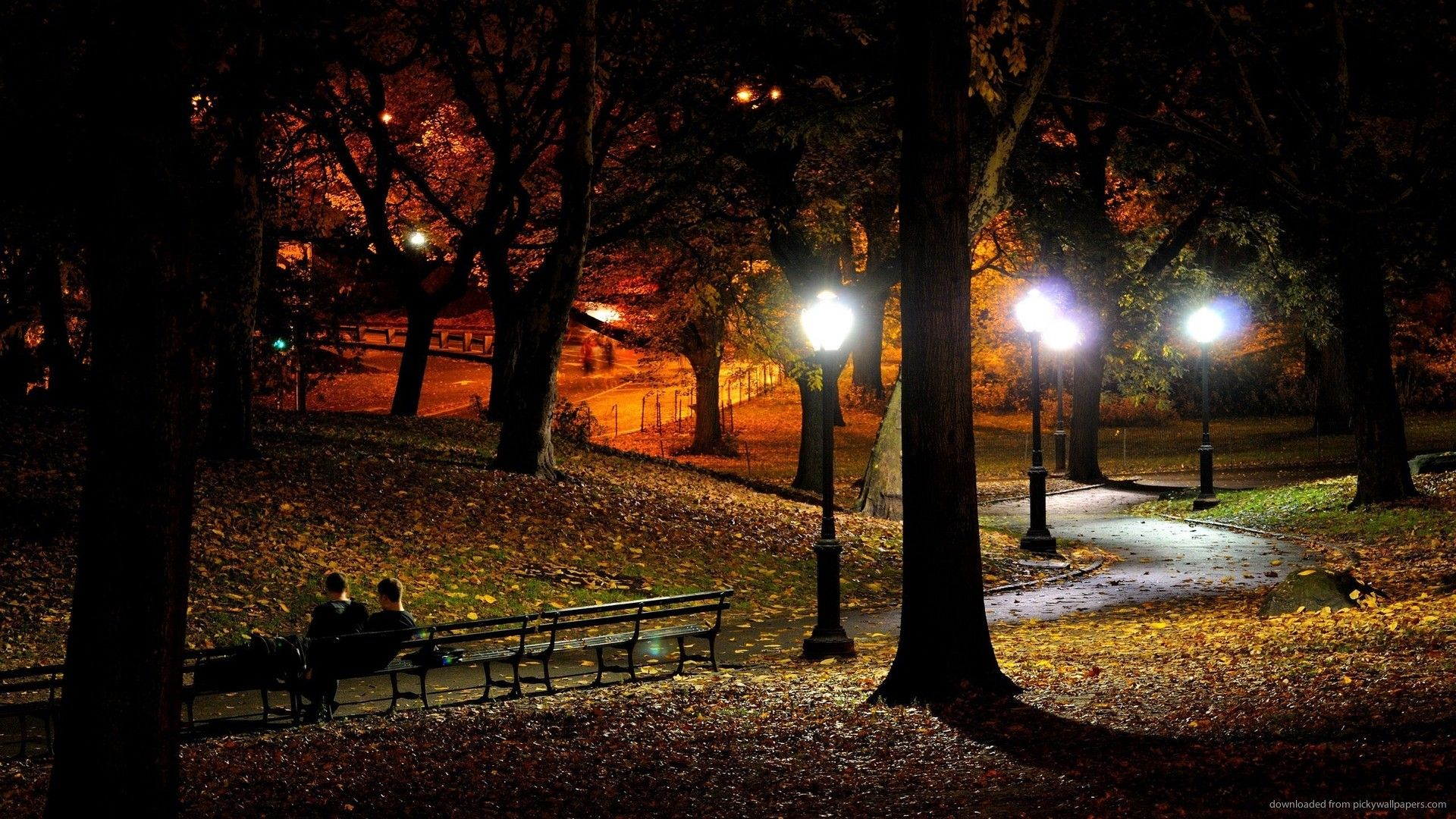 fall night pictures - Google Search