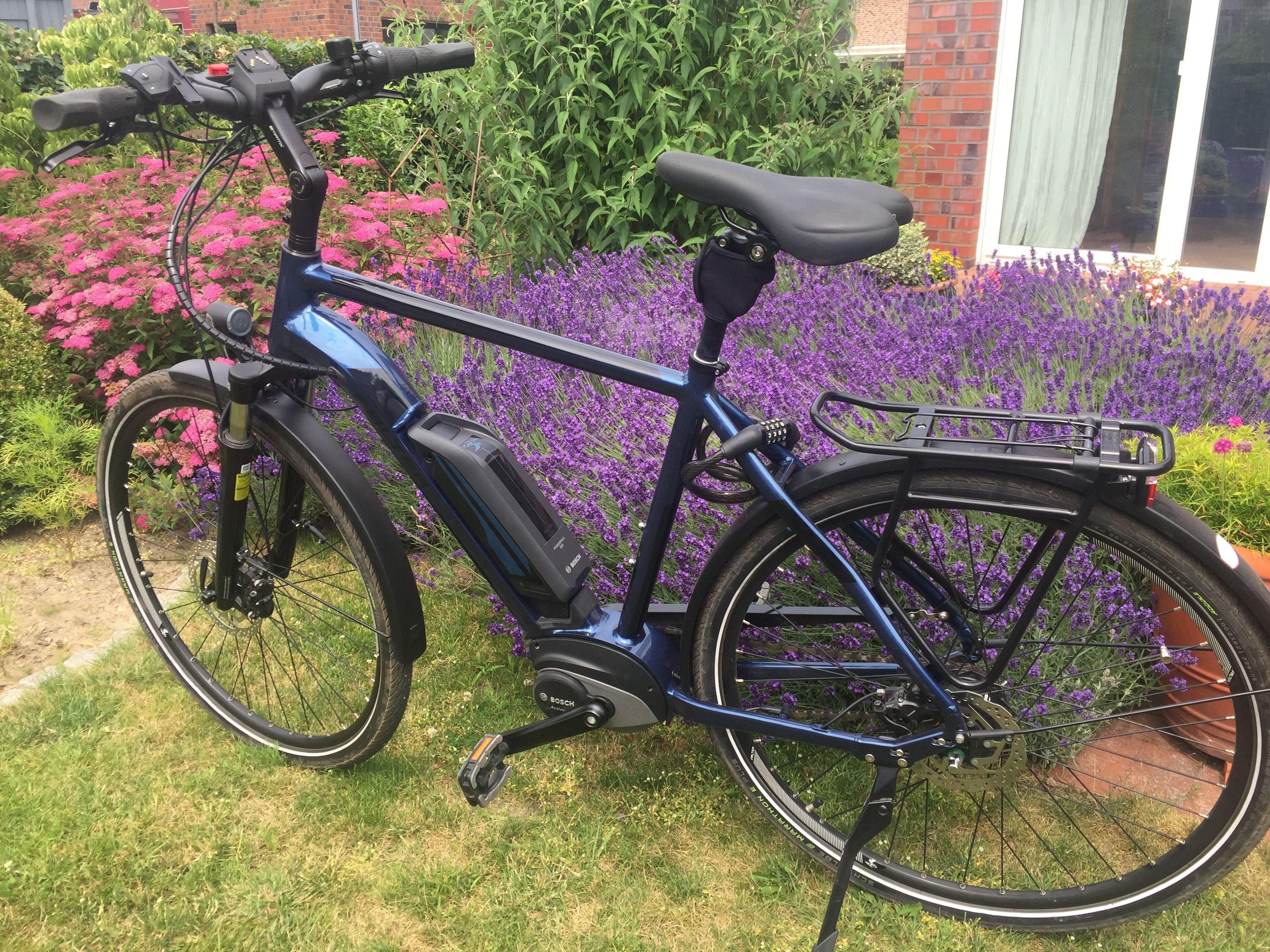 Das E 9 0 Fl 500 Ist Ein Schones Und Komfortables E Bike Das Mit Umfassender Und Praktischer Ausstattung Punktet Den Bosch An In 2020 E Bike Fahrrad Xxl Elektro Rad