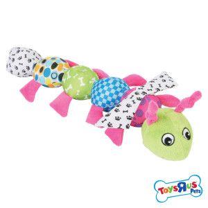 Toys R Us Pets Patterned Body Canvas Caterpillar Dog Petsmart