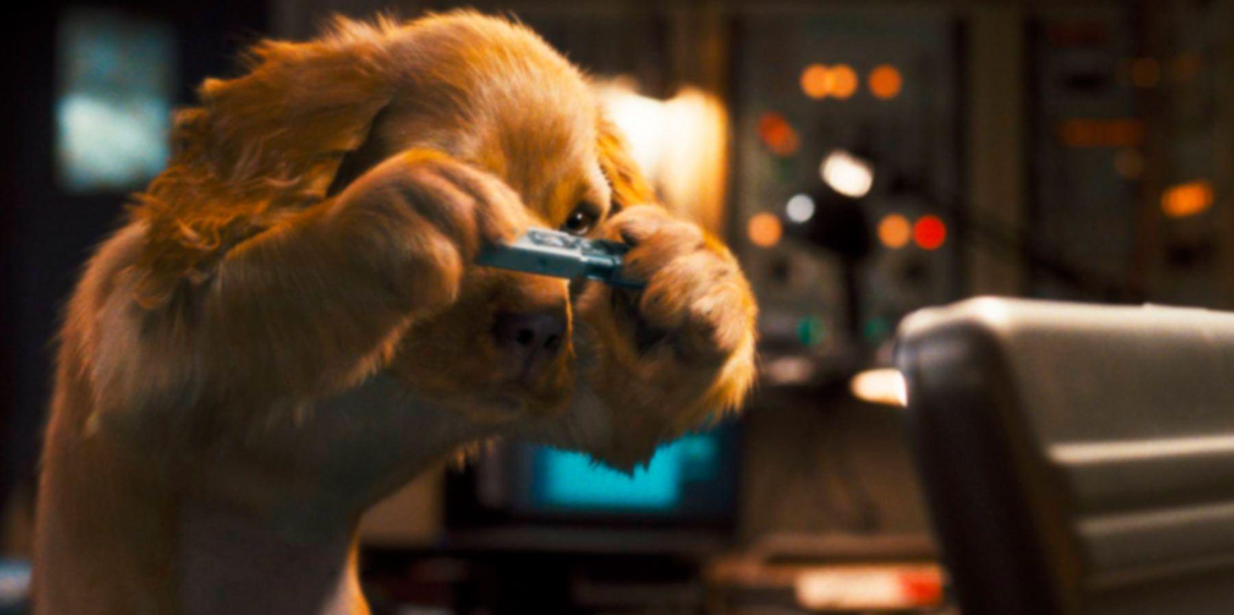 Фильмы про собак, список. Рецензии и отзывы