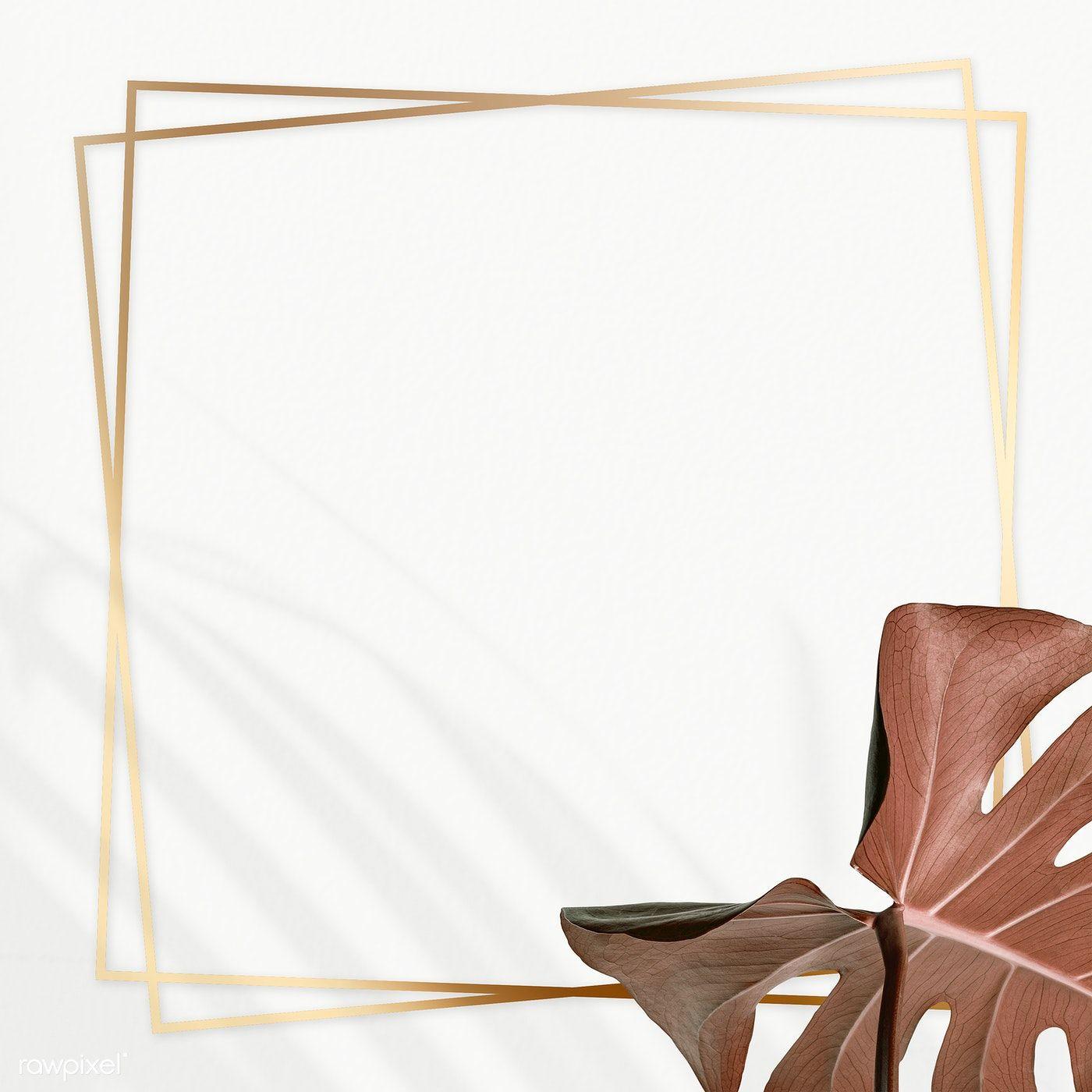 Golden Square Monstera Frame Design Resource Free Image By Rawpixel Com Adj In 2021 Frame Design Design Resources Tropical Frames