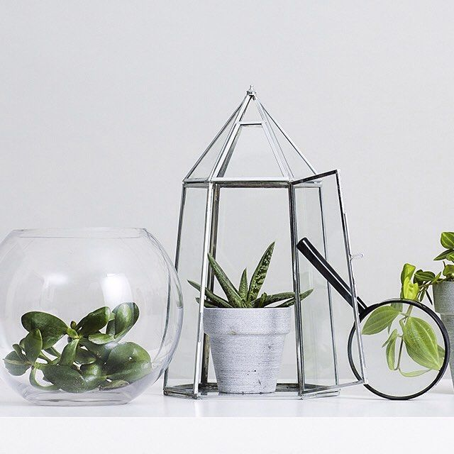 NEW IN! Crystal planter, the perfect place for your green babies. 299 SEK