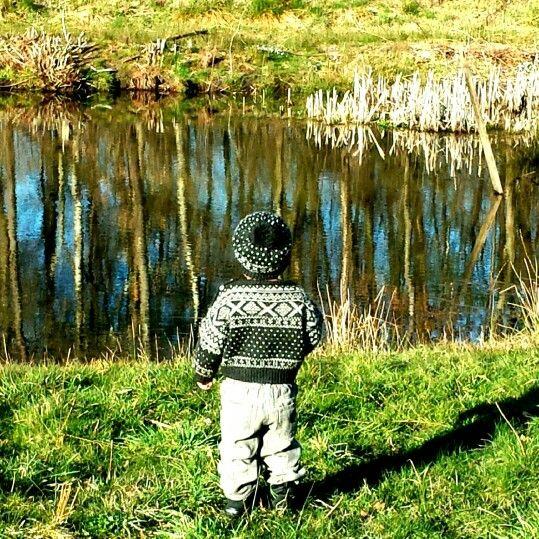 En smuk lille dreng jeg holder meget af, syntes det er et meget smukt foto  ved bakkeskoven i ikast ♡