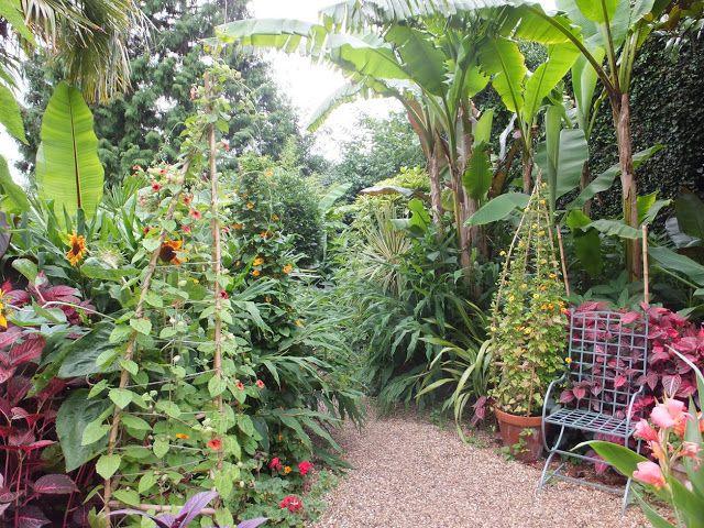 Pin On Will Giles Exotic Garden England