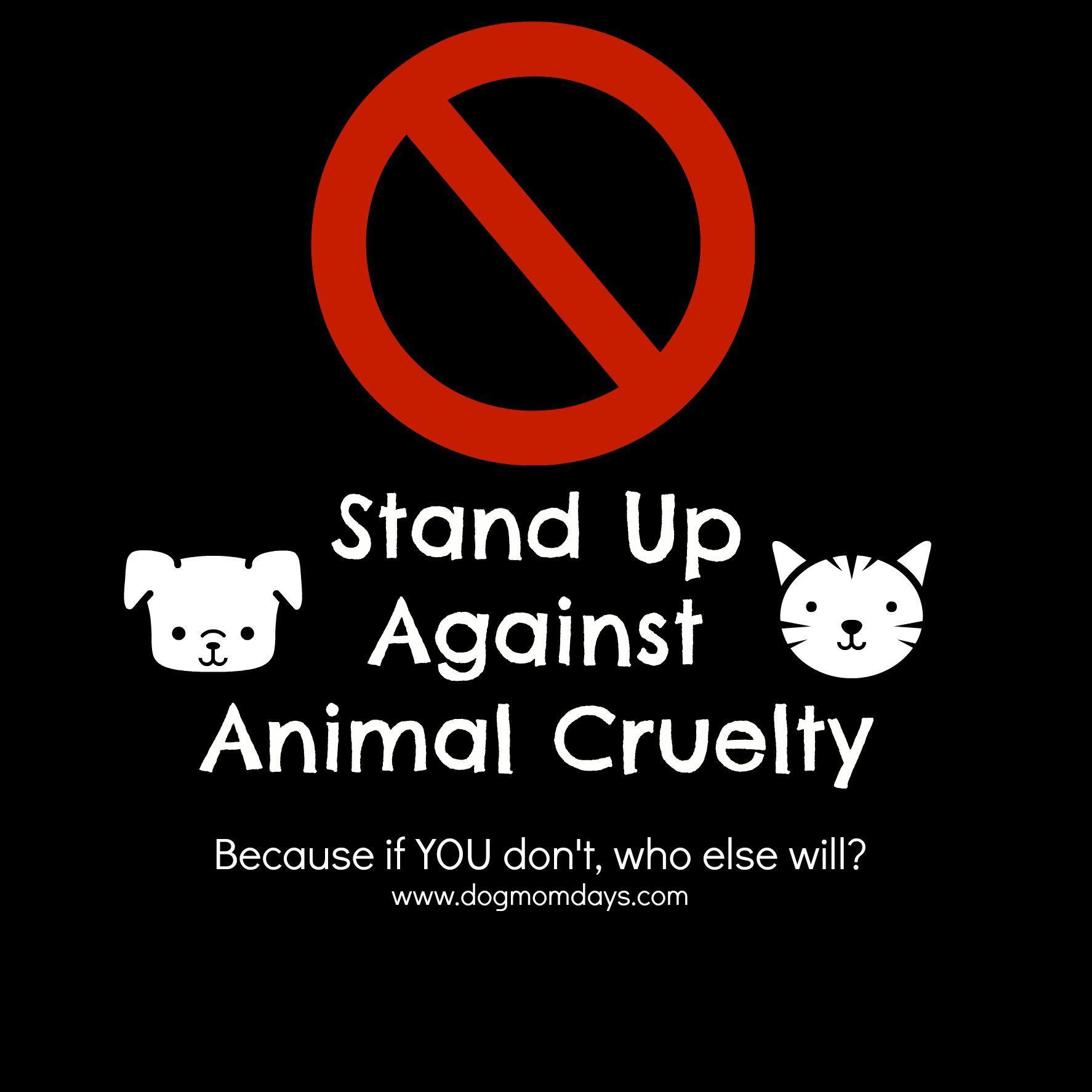 17+ Dd speak with animals ideas