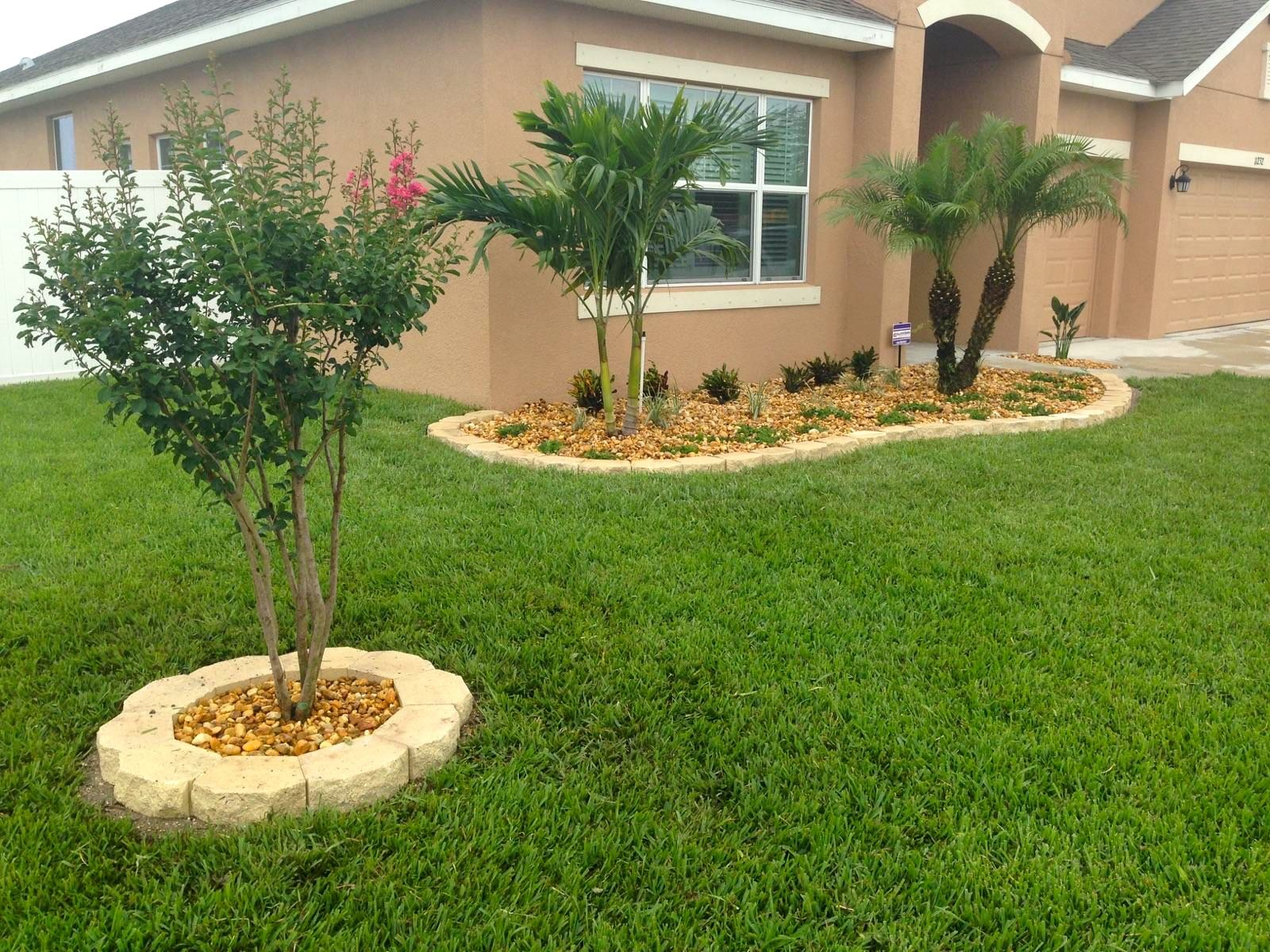 Crepe Myrtle, Adonidia and Roebelenii palms with new edging and ...