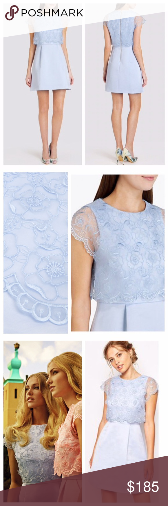 9660828f1288ec NEW Ted Baker Dabria floral bodice dress Brand new with  425 tags stunning  pale blue Ted Baker lace satin floral bodice dress. Absolutely gorgeous!