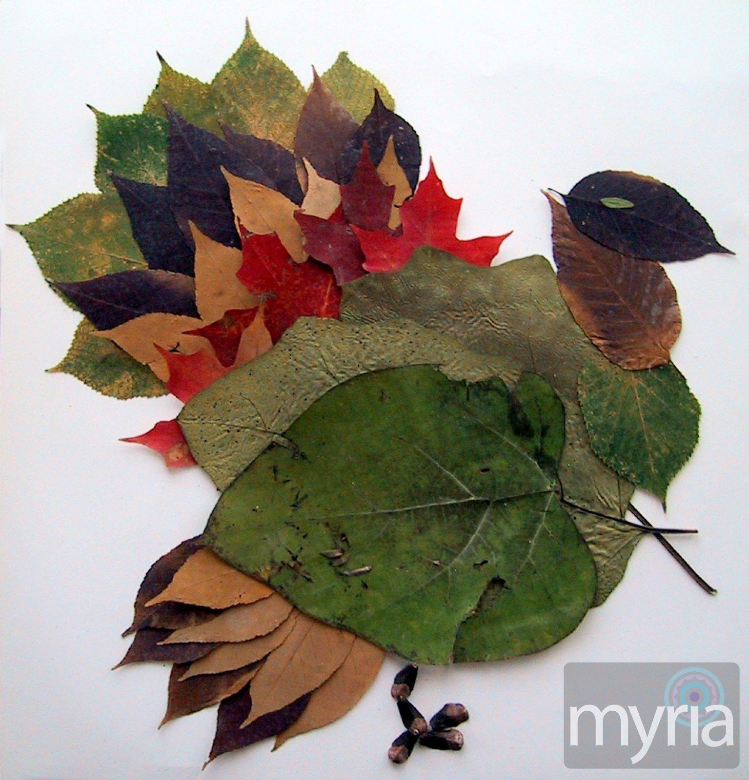 Leaves on pinterest autumn leaves fall leaves crafts and fall - Leaf Crafts For Fall
