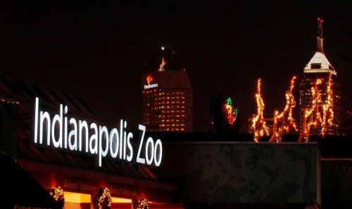 The Indianapolis Zoo Was The First Us Zoo To Have An Annual Holiday Lights Display Which Still Ex Christmas At The Zoo Holiday Lights Display Indianapolis Zoo