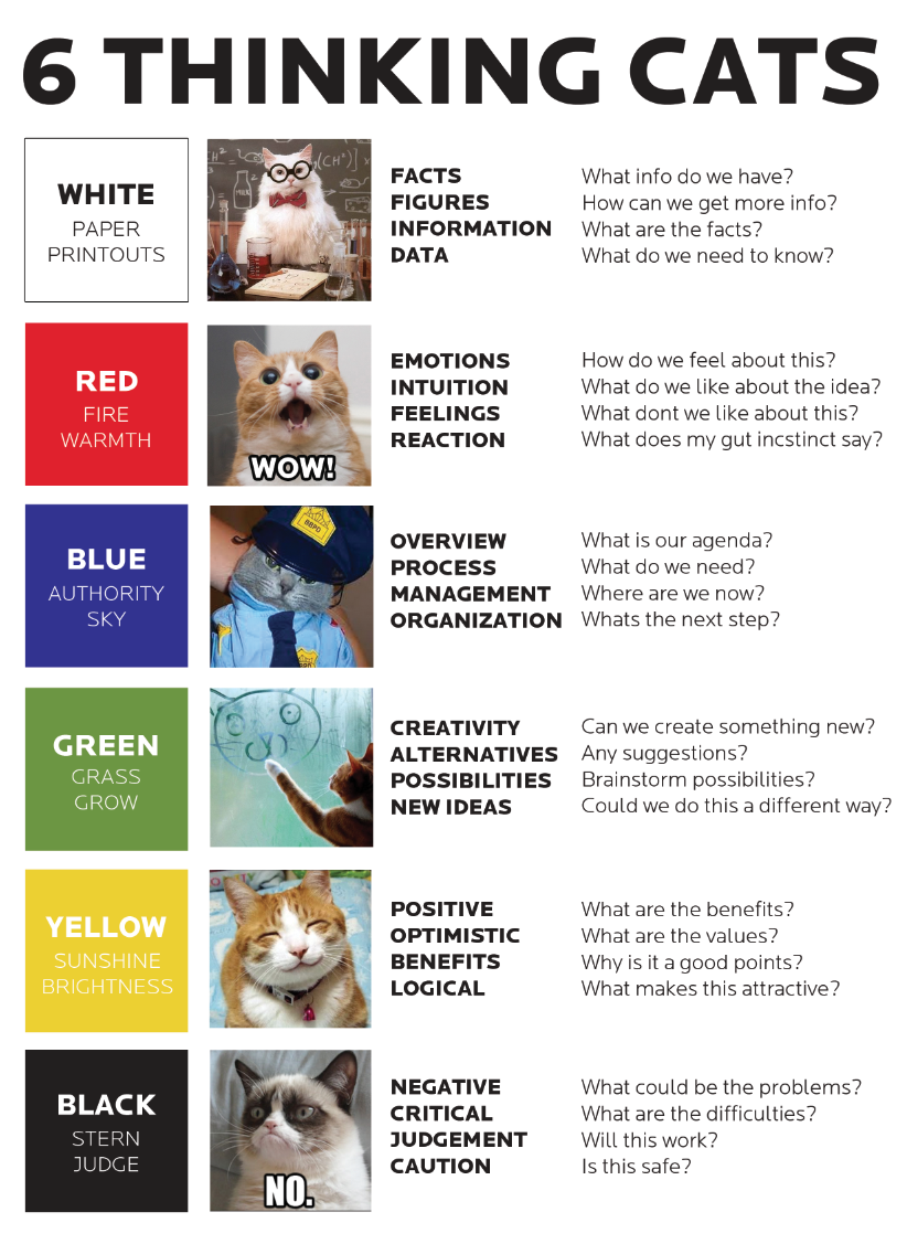 Critical thinking assessment test (cat)