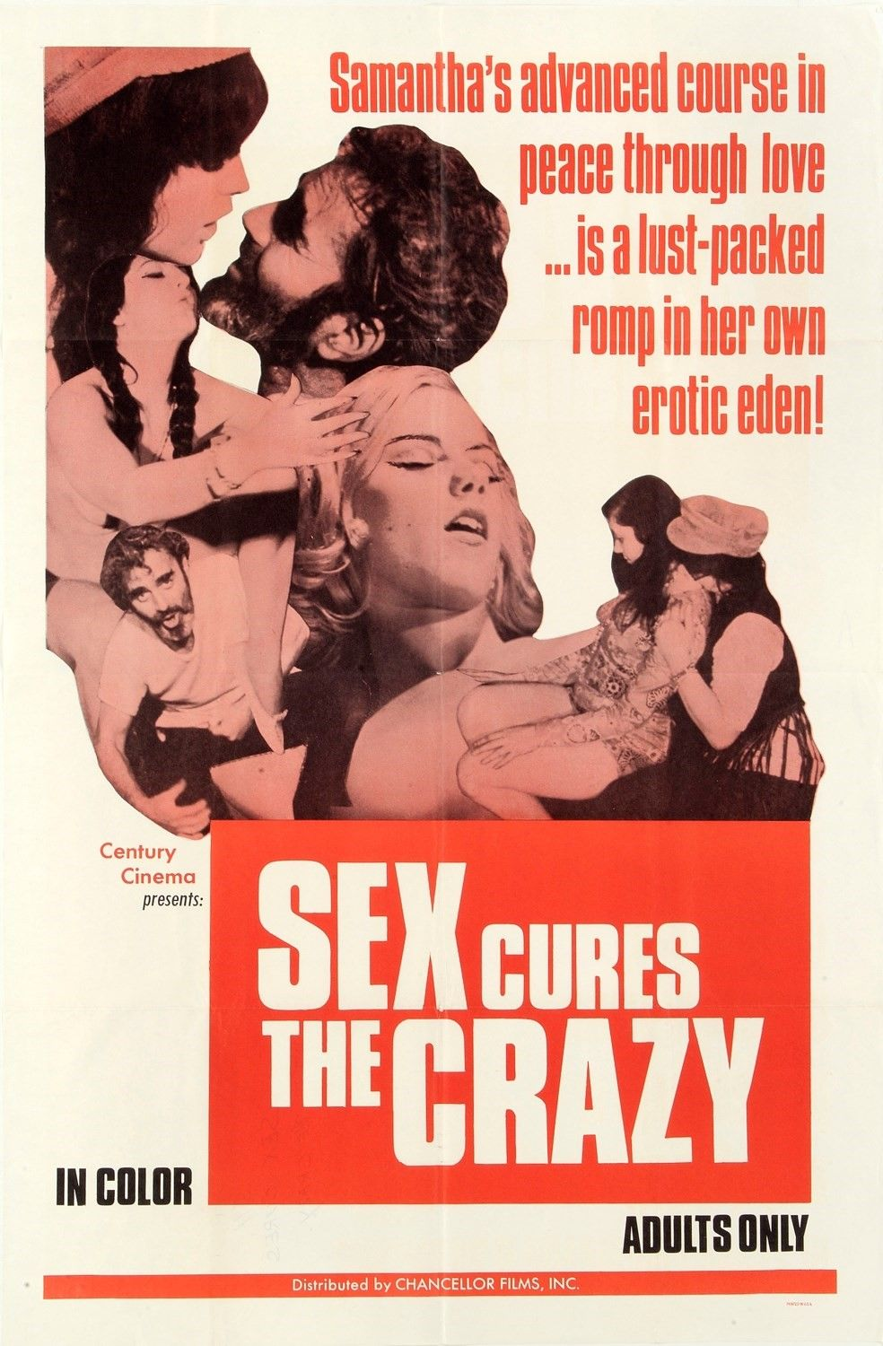 Adult Cinema Porn x-rated adult films of the 60s and 70s   film posters art in