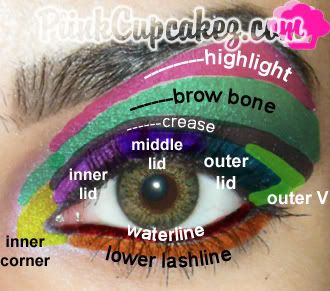 A complete eye diagram of where to place makeup cosmetics a complete eye diagram of where to place makeup ccuart Images